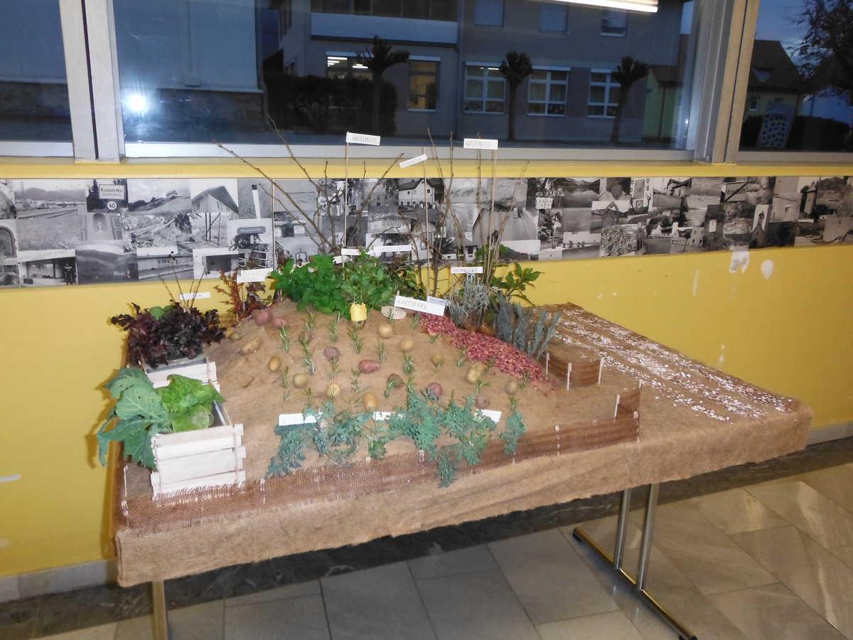 Modell Schulgarten